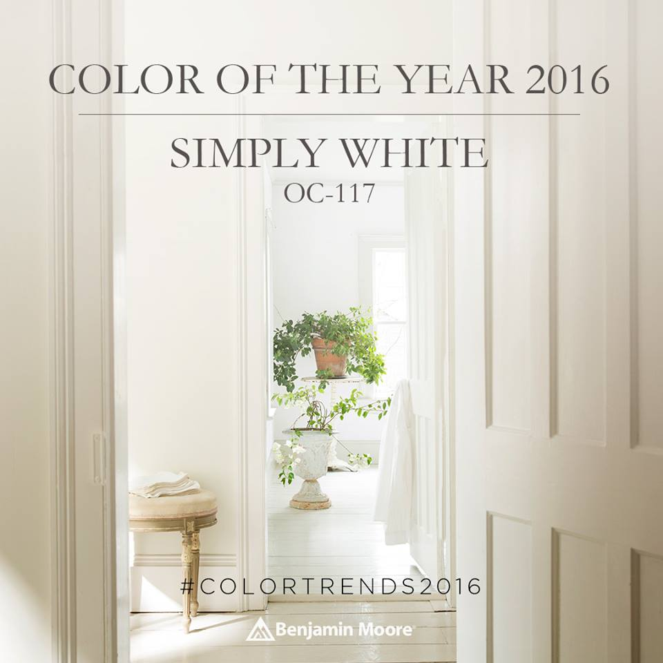 """Color Of The Year 2016: My Take: Benjamin Moore 2017 Color Of The Year """"Shadow"""