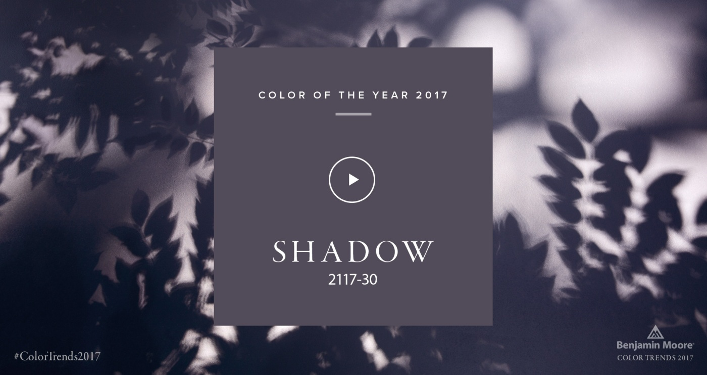 "Benjamin Moore 2017 Color of the Year ""Shadow"" 